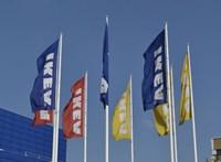 Óceánmentő ötlet: az IKEA felhasználná termékeiben a műanyag hulladékot