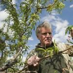 Segítség a mezőgazdasági természeti károk esetén