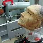 Emberi koponya helyett valami egész más került elő a titokzatos szibériai agyagfejből
