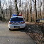 Autós üldözés Pilisszántónál: ötféle drogot mutattak ki a sofőrnél