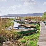 Suchman: egy fillért sem vontak el a Balatontól