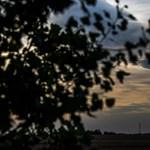 Csodaszép halót lőttek Debrecennél - fotó