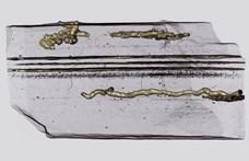 """Megtaláltak egy 2 100 000 000 éves organizmus árulkodó """"lábnyomait"""""""