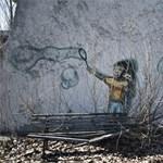 Nem találtak mutánsokat Csernobilnál