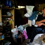 Ledózerolt kalyibák: kiszorítják az erdőből a fedél nélkülieket – galéria