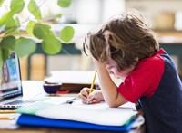 A diákok harmada nem fért hozzá a távoktatáshoz, az EP a digitális szakadék felszámolását kéri