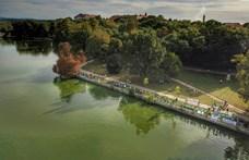 Újabb ingatlant vesz a tatai tó partján a luxushotelt is építő cégcsoport