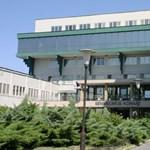 Németországból hozatott meglepetést egy volt beteg a halasi kórházba