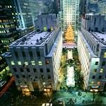 Föld alatti édenkert lesz New Yorkban
