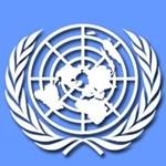 ENSZ-szakértő jön vizsgálódni Magyarországra