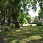 45 ezer csontvázat ásnak ki London közepén, mert kell a hely a gyorsvasútnak