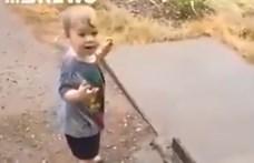 A pillanat, amikor egy ausztrál kisgyerek először lát esőt – videó