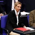 Brexit után Dexit? Meglebegtette a német kilépést az EU-ból a szélsőjobboldali AfD kemény magja
