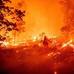 A kaliforniai erdőtüzek megmutatják, mit jelent ránk nézve a klímaváltozás – galéria
