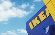 Nem engedték be az IKEA éttermébe a vakvezető kutyájával érkező vásárlót