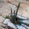 Bűncselekmény tetézi az orosz űrkutatás gondjait