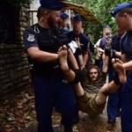 Ligetvédők: drámai képek egy küzdelmes napról