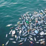 Partra mosta a víz a 47 évvel ezelőtt kidobott műanyag flakont