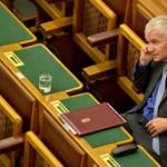 A kormány kedvenc egyeteme javasolta Polt professzori kinevezését
