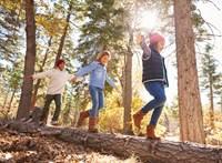 Vekerdy Tamás: Milyen gyerekekből lesznek stressztűrő felnőttek?