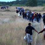Kötelező lehet a védőoltás a migránsoknak