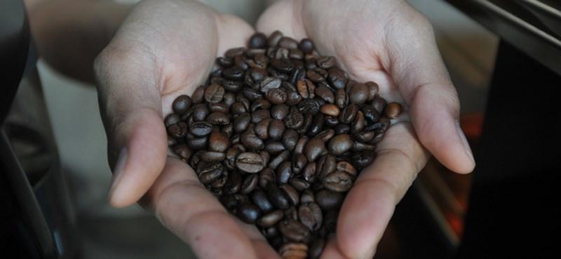 Drága és hiánycikk is lesz a kávé?