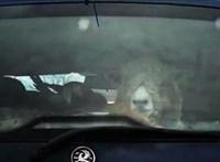 Azt ismerik, hogy két birka, egy kecske, egy szarvas és egy papagáj utazik egy Opelben? – videó