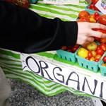 """Rengeteg cég trükközik a """"zöld"""" címkével"""