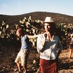 Tudja, milyen zseniális filmek készülnek Latin-Amerikában?