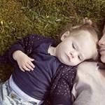 A gyermekvédelembe kerülők száma fokozatosan nő, a nevelőszülőké nem