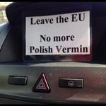 Brit csavargó a lengyel anyának a német Aldiban: húzzatok haza!