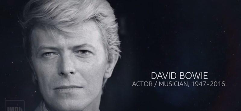 Megható videóban foglalták össze, milyen hírességeket vett el tőlünk 2016