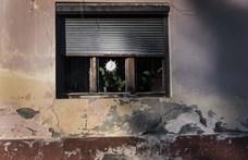 Évtizedek óta először nőhet a szegénység mértéke a világban