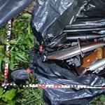 Lopott áram, drogkertészet, fegyverarzenál: bűntanyát számoltak fel Verőcén – videó