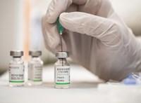 Közel tízszeresére ugrott tavaly a Sinopharm-vakcinát beszerző magyar cég árbevétele