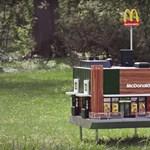 """Megnyílt a világ legkisebb """"McDonald's étterme"""", ahova csak méheket várnak"""