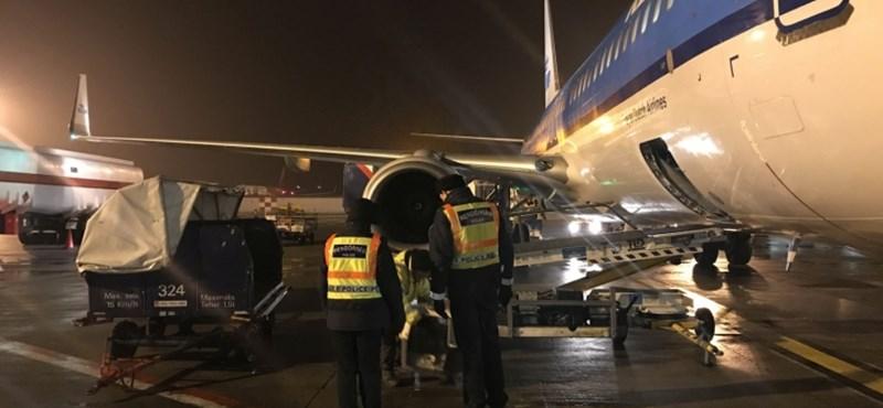 Újabb reptéri tolvajokat fogtak el Ferihegyen