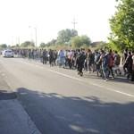 Már nem éhségsztrájkolnak a menekültek Horgosnál