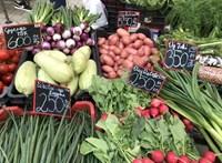 Kevesebb hús, magasabb minőség: a koronavírus a fogyasztási szokásainkat is befolyásolta