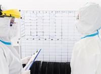 Döntött a kormány az orvosok átvezényléséről és a másodállások korlátozásáról