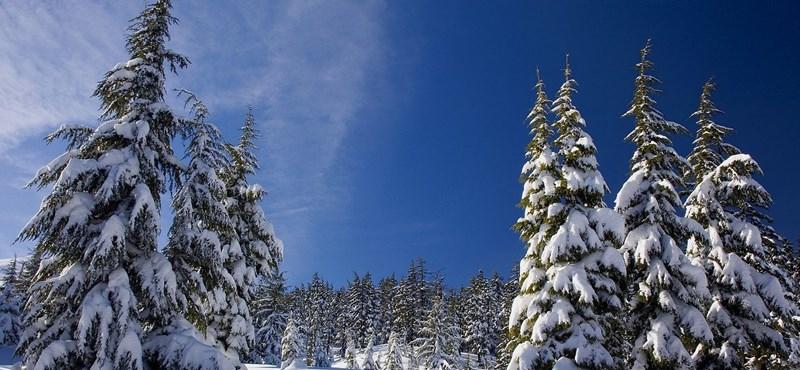 Ausztriában tovább tart majd a téli szünet, hogy mindenkit letesztelhessenek