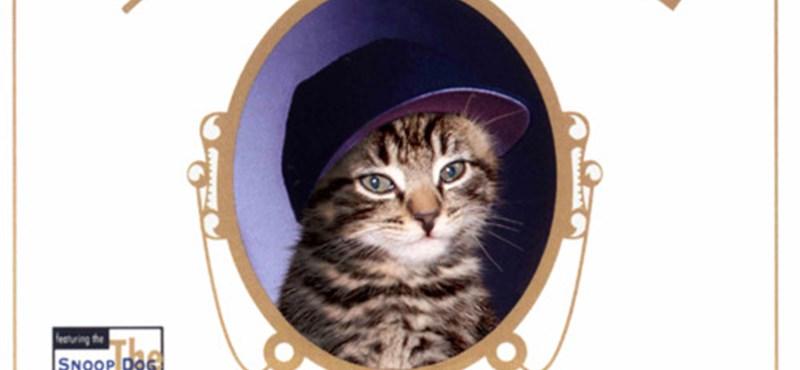 Mikroblog ajánló: Klasszikus albumborítók macskaszereplőkkel