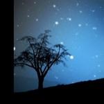 Zene péntek estére: Mutt feat. Kevin King - Conversations