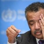 Független vizsgálat indul a WHO szerepének tisztázására