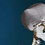 Meglepődtek a tudósok, amikor kifigyelték: mozognak a halottak