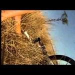 Videó: antilopbika öklelte fel a bringást