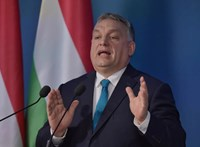 Kim Lane Scheppele: Orbán megteheti, hogy egy időre veszít a népszerűségéből