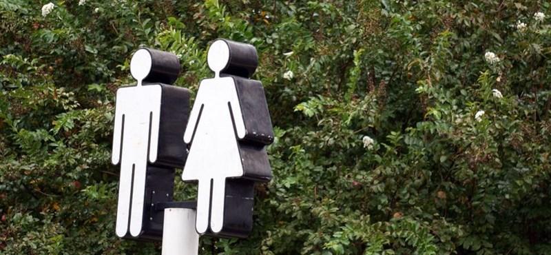 Megszólalt a genderszak-ügyben az ELTE: a döntés megkérdőjelezi a tanszabadságot