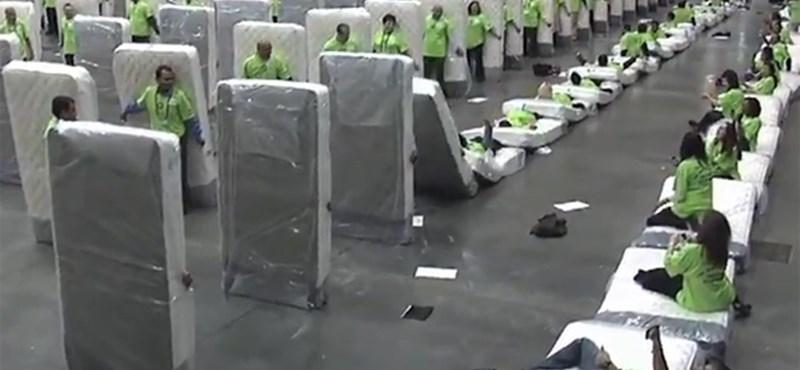 A nap videója: megdőlt az emberi dominórekord