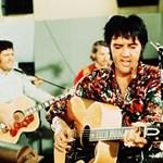 Lenyűgöző képek: Így nézne ki ma Elvis, Lennon vagy Bob Marley